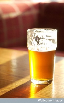 C0014971 Glass of beer